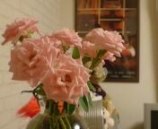 元気な花。